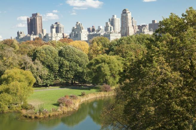 Central-Park-New-York.jpg